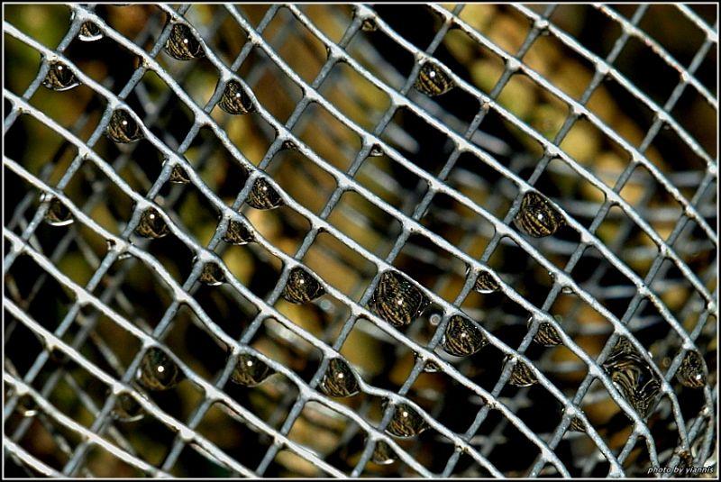 Imprisoned drops